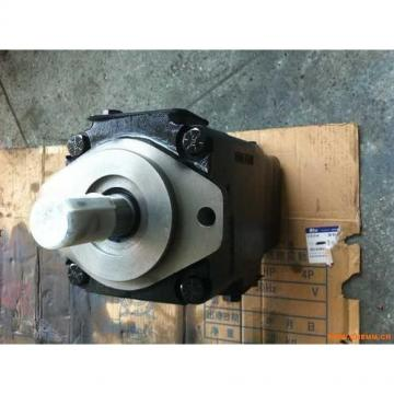 2520VQ17C11 11CC20 Hydraulisk avtappspump