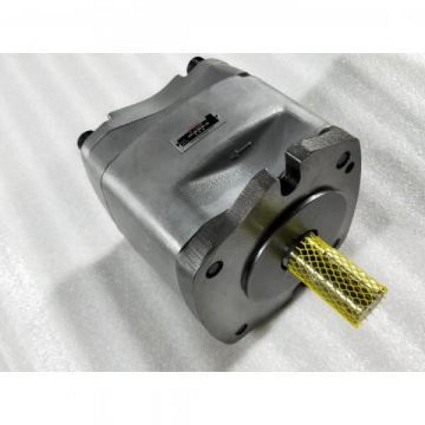 PVS-1A-22N2-11 Hydraulisk kolvpump / motor